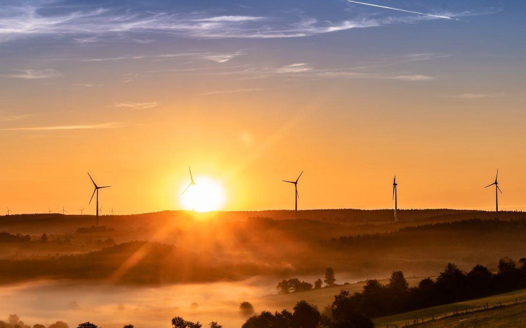 Wind Turbines: using nature's power to create electricity