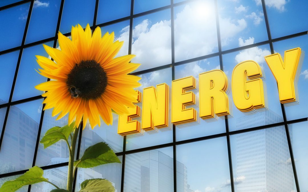 Saving the Planet with photovoltaic systems!